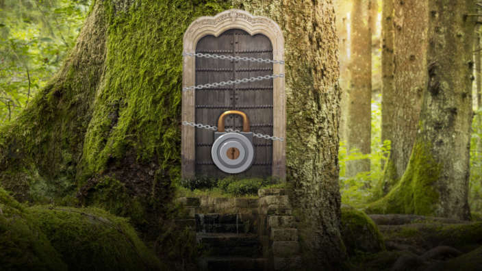 Treehouse-themed-escape-room-at-Oakdene-Forest-Park