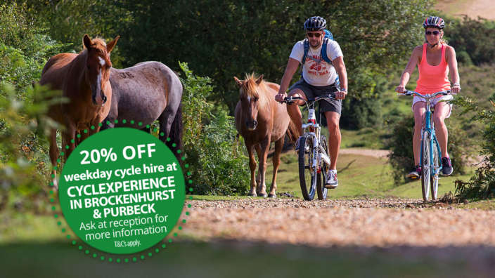20-percent-discount-at-cyclexperience-brockenhurst-and-purbeck