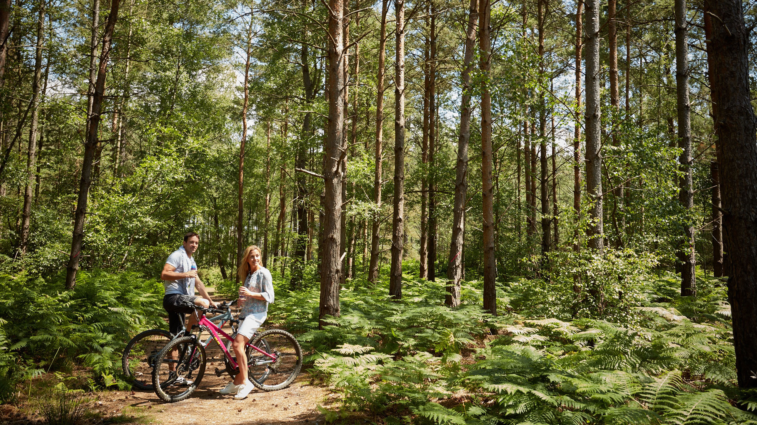 Couple sat on bikes in Hurn Forest