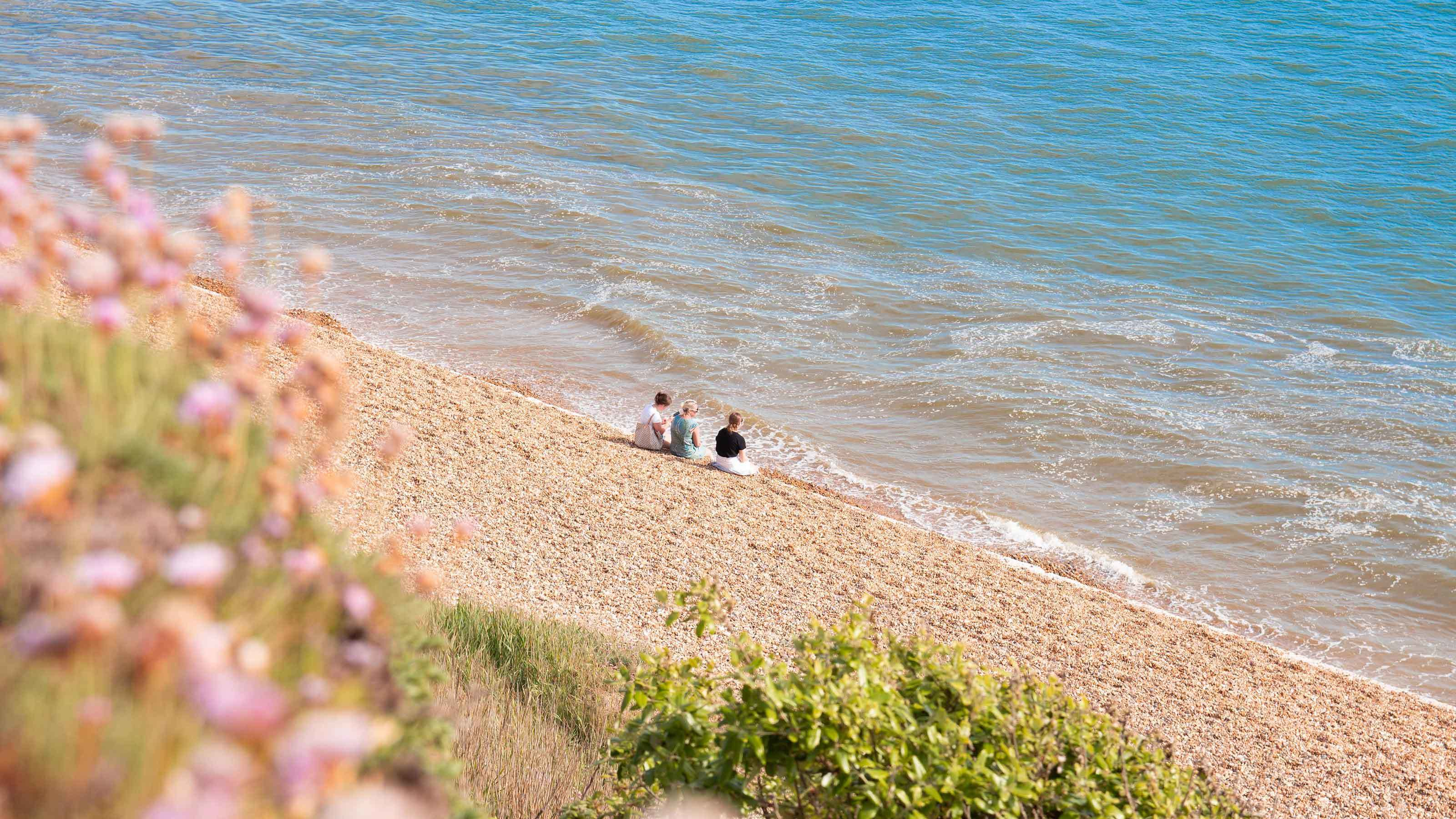 Group sat on shores of Milford on Sea Beach