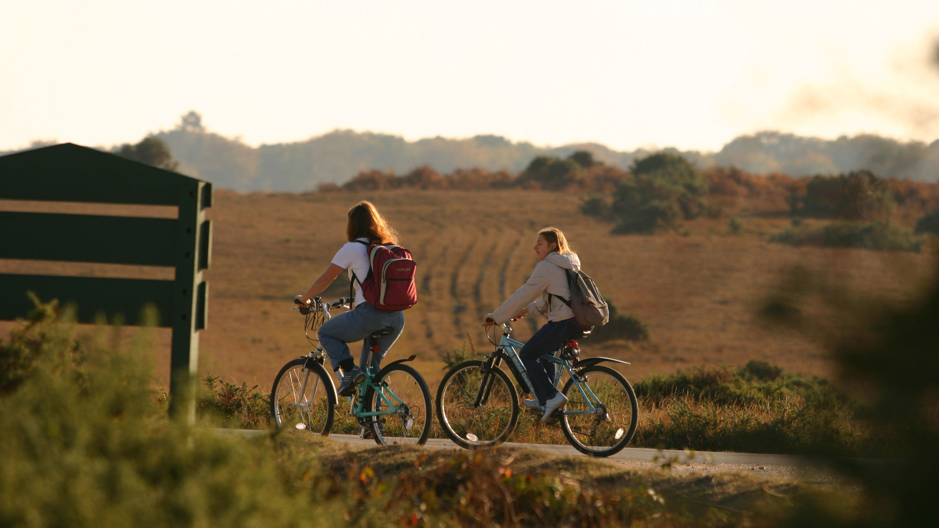 Cycling-through-the-New-Forest-landscapes