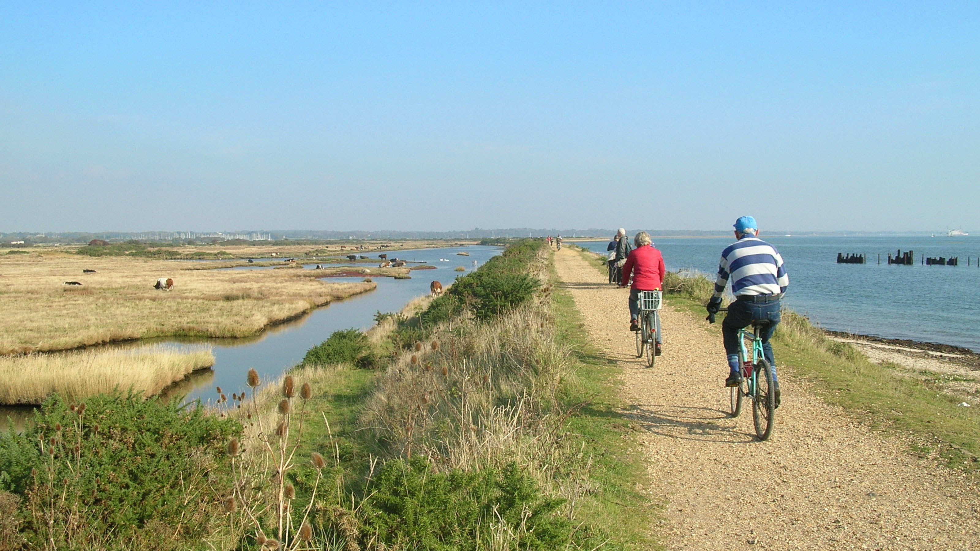 Cyclists-riding-bikes-along-the-Solent-Way