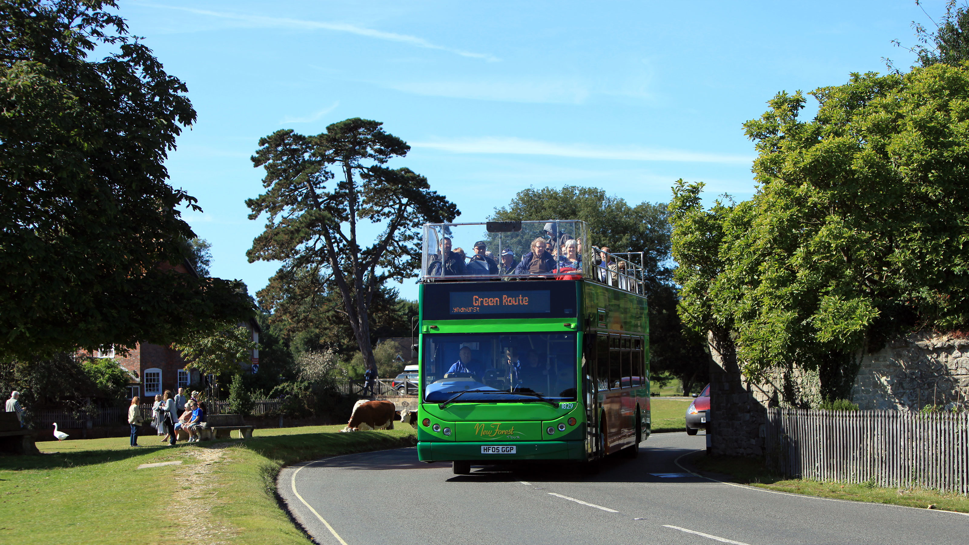 New-Forest-Tour-Bus-Green-Route
