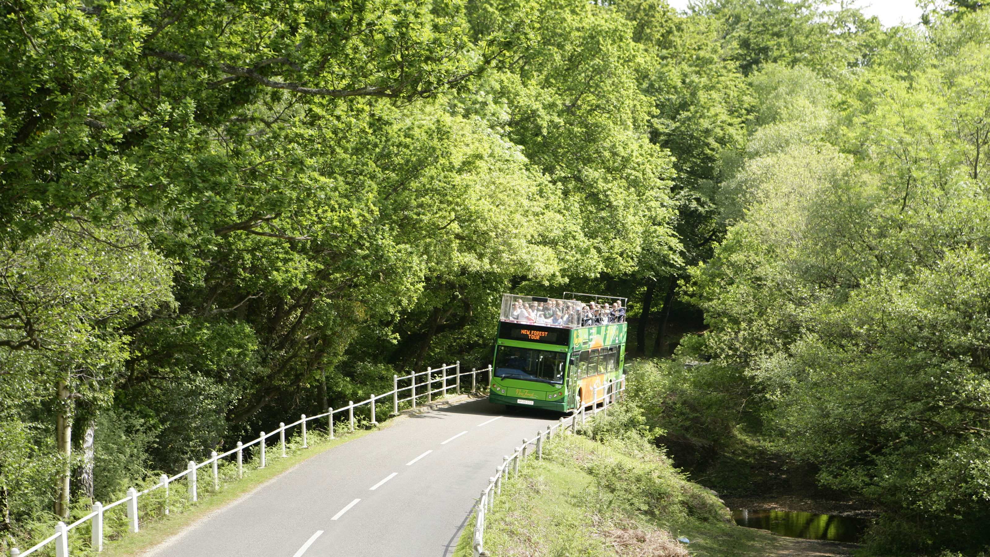 New-Forest-Tour-Green-Route