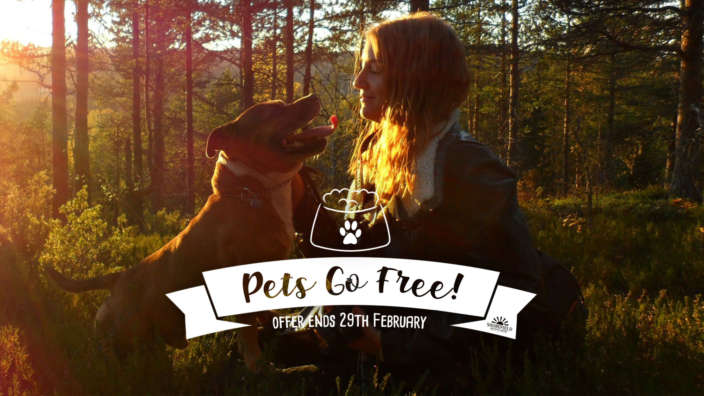 Shorefield-Holidays-Pets-Go-Free-Offer-at-Dorset-and-New-Forest-Holiday-Parks
