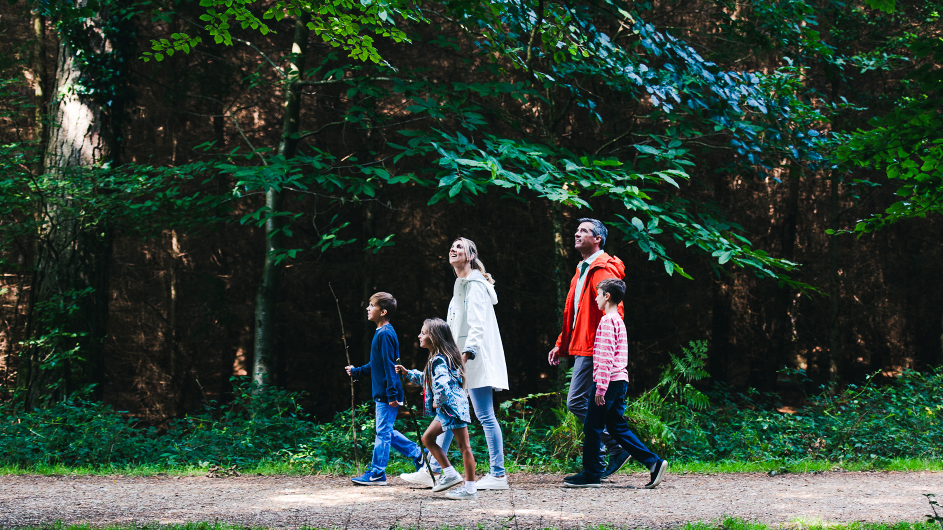 Family-walking-through-woodland-forest