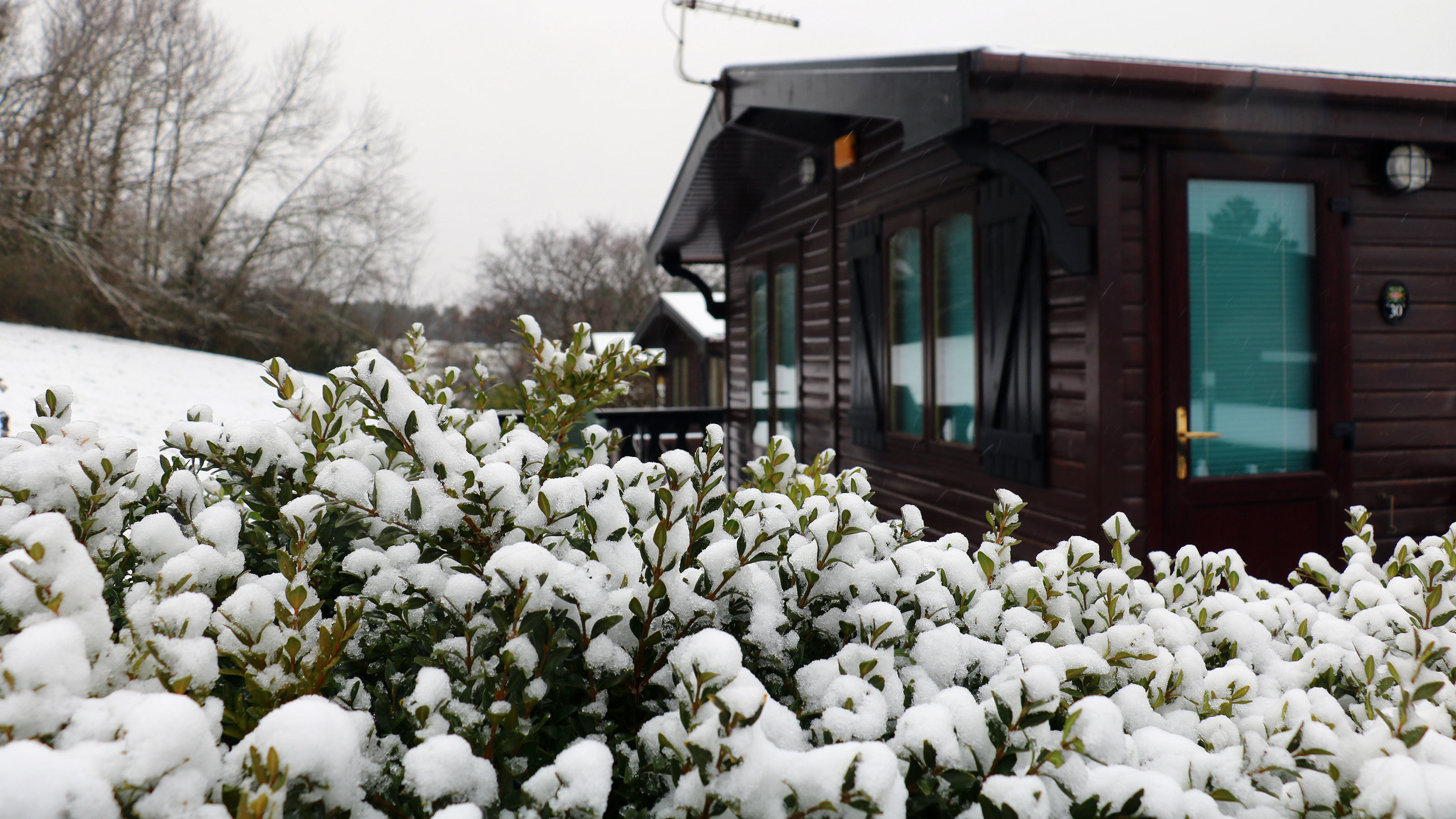 Lodge-at-Shorefield-Country-Park-in-the-snow