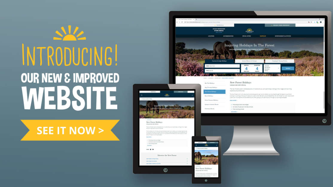 Introducing-our-brand-new-website-shorefield-intro