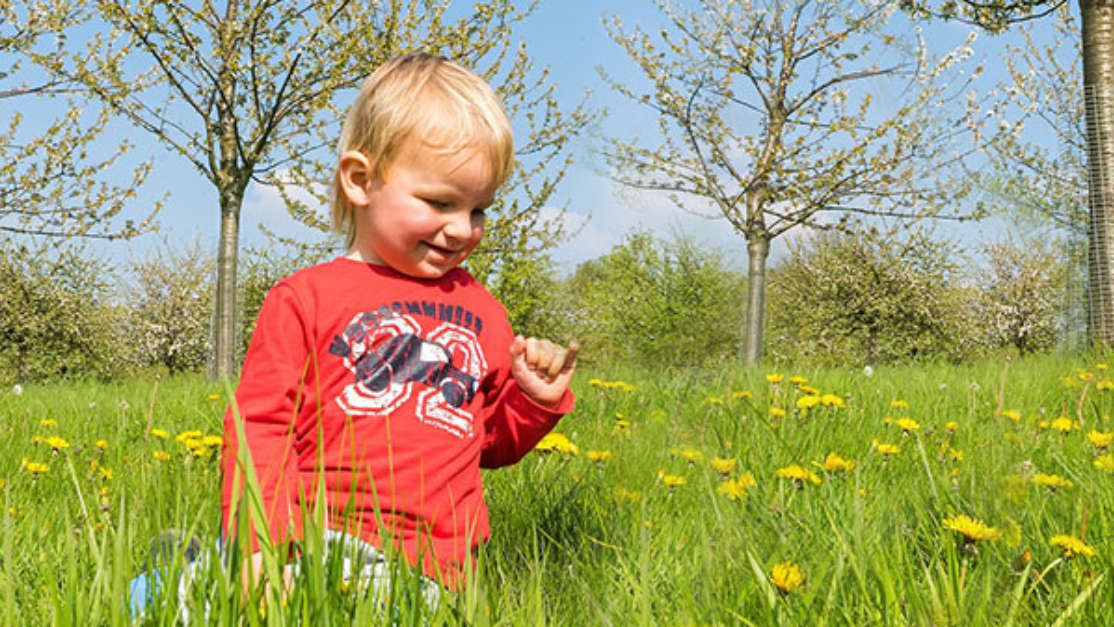 Top Places To Take Under 5 S This May Bank Holiday 01
