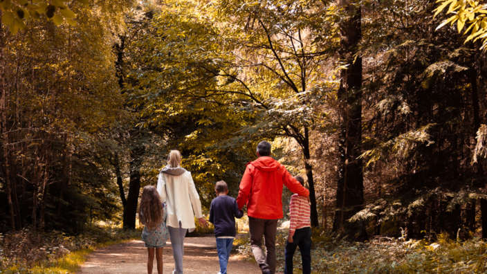 1 Forest Family Walking Autumn