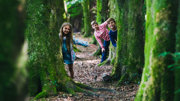 4 Children Playing Woods Forest