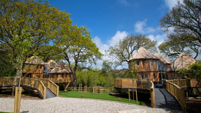 Two treehouses silvertree and coppertree in the New Forest