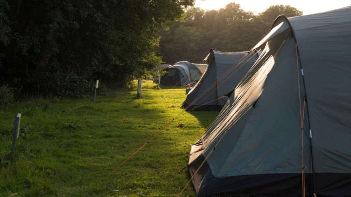 Tents Pitched On Grass At Lytton Lawn