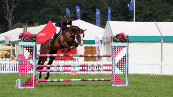 Local Events Horsejumping Display At The New Forest Show