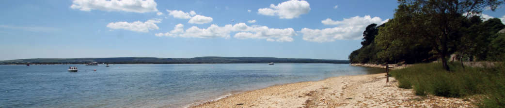 Brownsea-Island-beach-and-view-across-Poole-Harbour