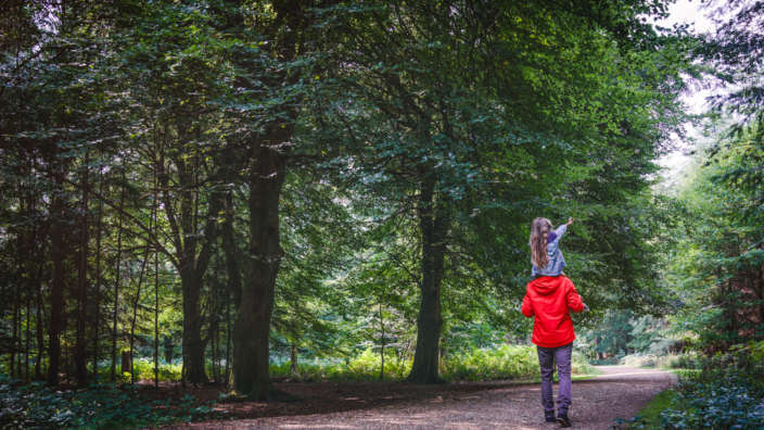 Father-and-daughter-walking-through-woodland