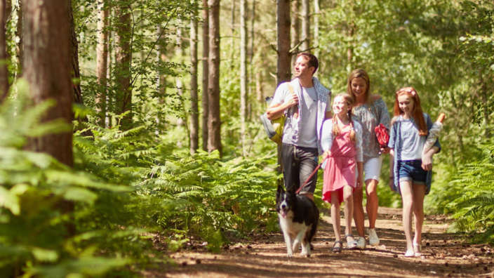 Family Walking Dog Through Woods