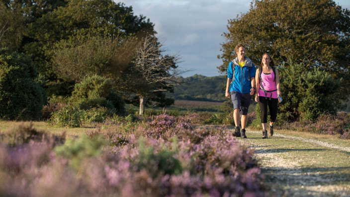Couple Walking Through New Forest Heathland
