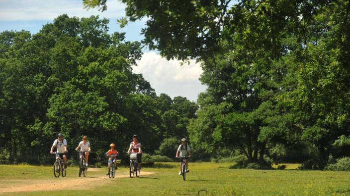 Family-cycling-through-forest