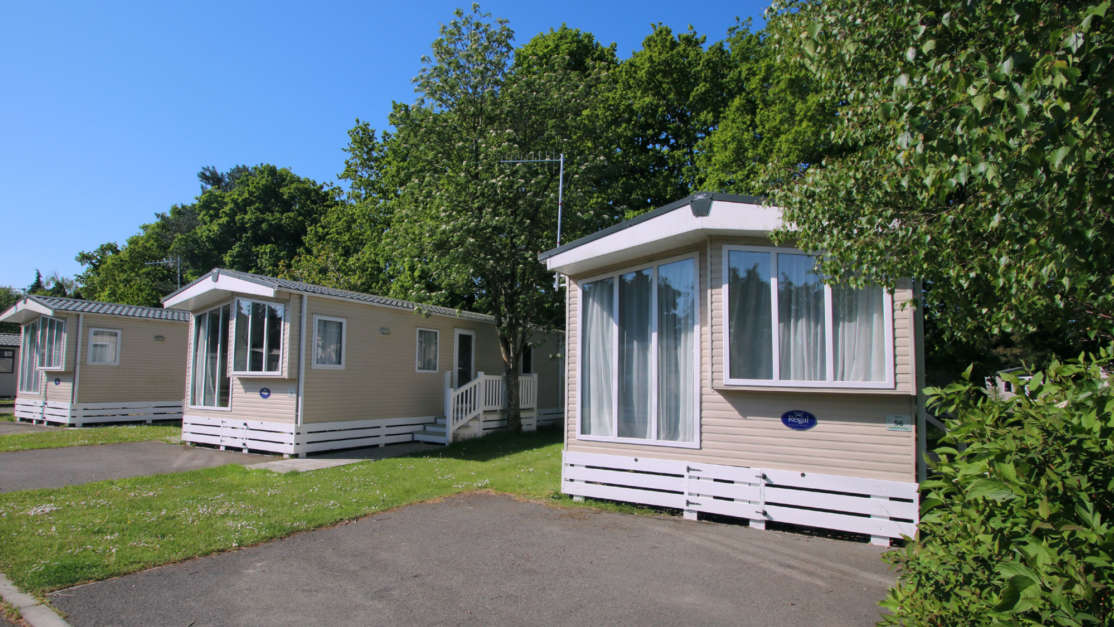 Caravans At Forest Edge Holiday Park