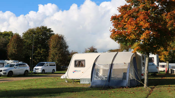 Camping and touring at Lytton Lawn Touring Park in the New Forest