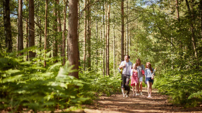 Family Walking Dog Through Woodland