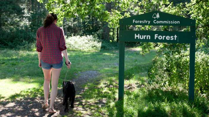 Forest Women Dog Walking