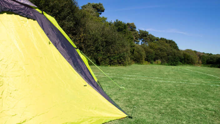 Camping at Oakdene Forest Park in Dorset grass pitches