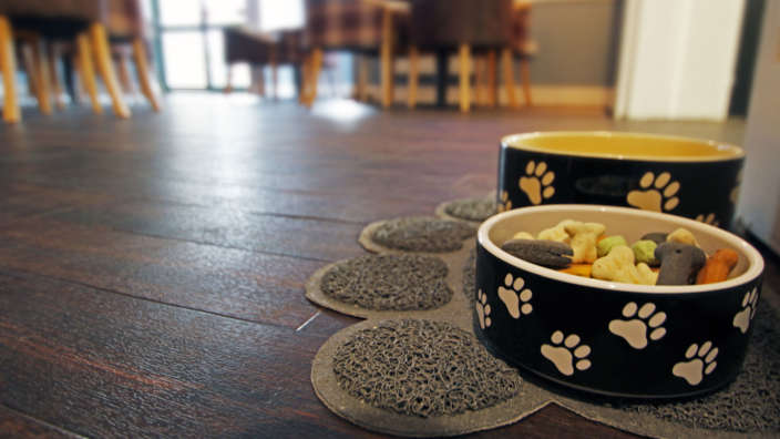Dog-Friendly Milford Room with dog bowls and biscuits