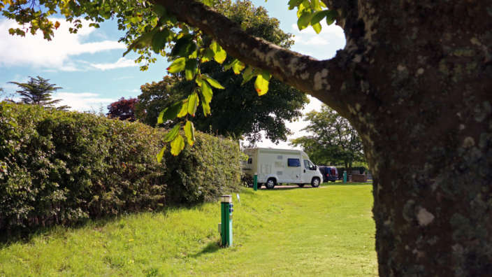 Grass pitches with electric hookup on the touring field at Wilksworth Caravan Park