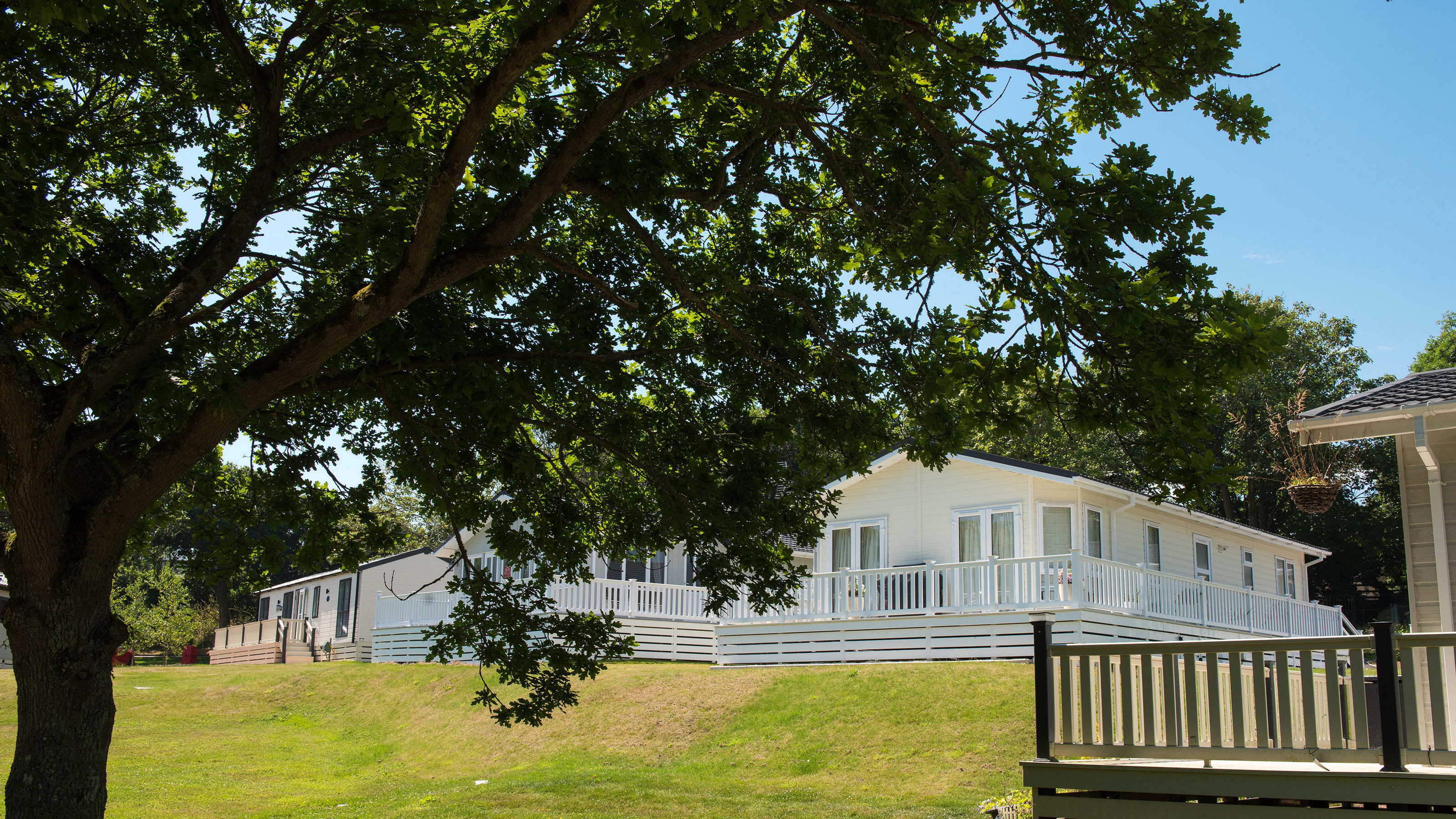 Lodge Holiday Homes In Woodland Setting New Forest