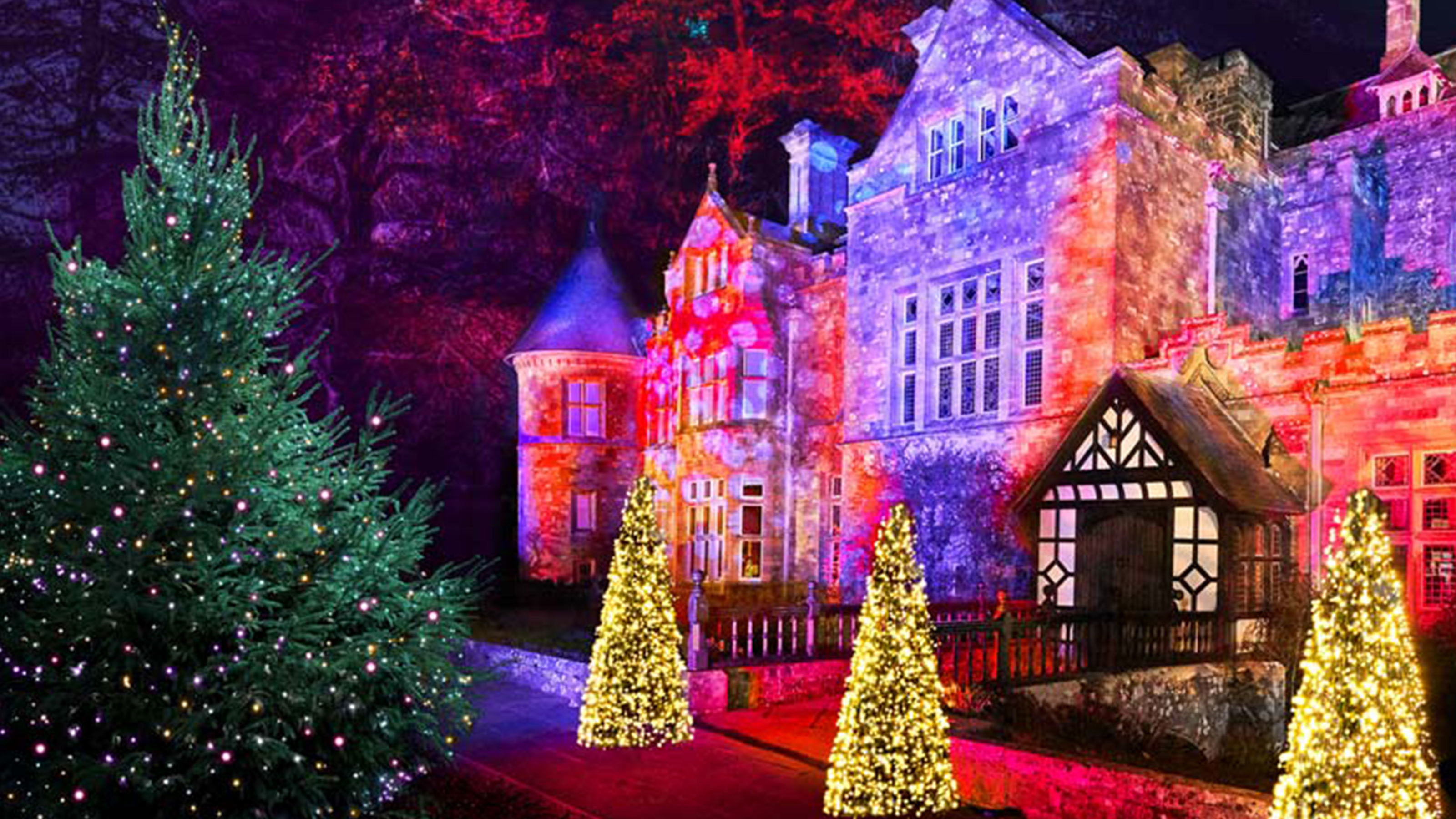 Christmas Events in Hampshire & Dorset   Shorefield Holidays